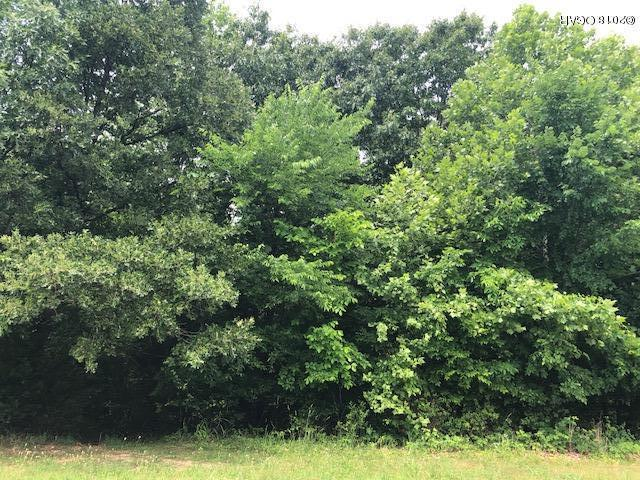 Lot 12 Arbor Road Joplin, MO 64804